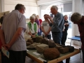 building-stones-exhibtion-at-bewdley-museum-june-aug-2012-6