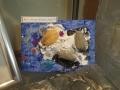 trilobite-montage-lauren-brace