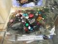 trilobite-montage-sammy-kelly