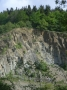 near-vertical-dip-of-silurain-aged-beds-in-woodbury-quarry-shelsley-beauchamp