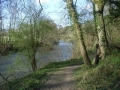 The River Teme, Martley, Worcestershire