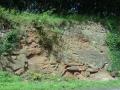 Quatford road cutting, Shropshire