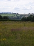 Wildflower meadow, Quatt, Shropshire