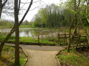 East access nature trail and wetland