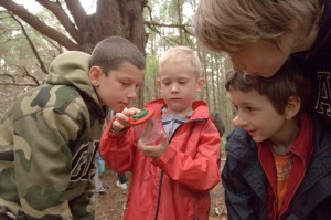 Learning programmes at the Wyre Forest