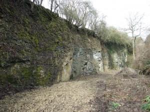 Hobbs Quarry, Longhope