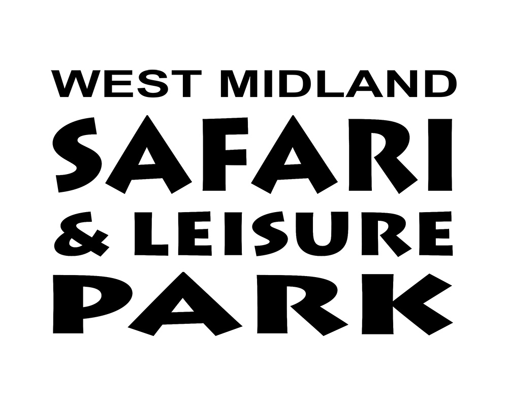 midland park black dating site Seaside soirée reservations the midland park public education foundation invites you to the the black & white bash featuring the nerds.